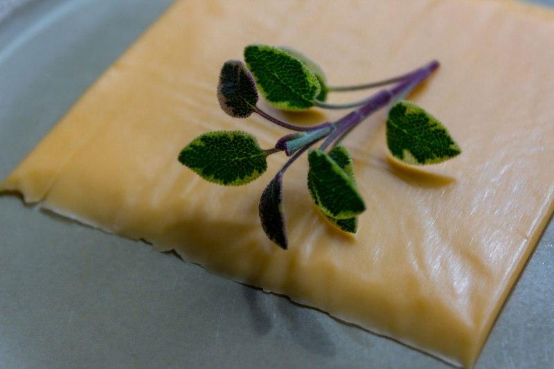 CheeseRecipe-5